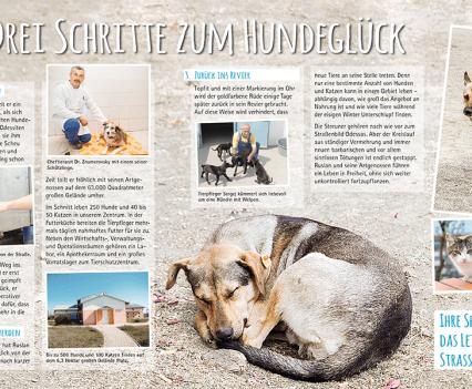 Deutscher Tierschutzbund Odessa
