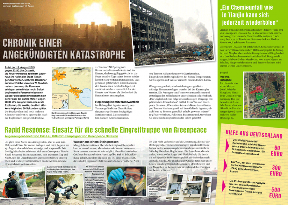 Greenpeace China Flyer
