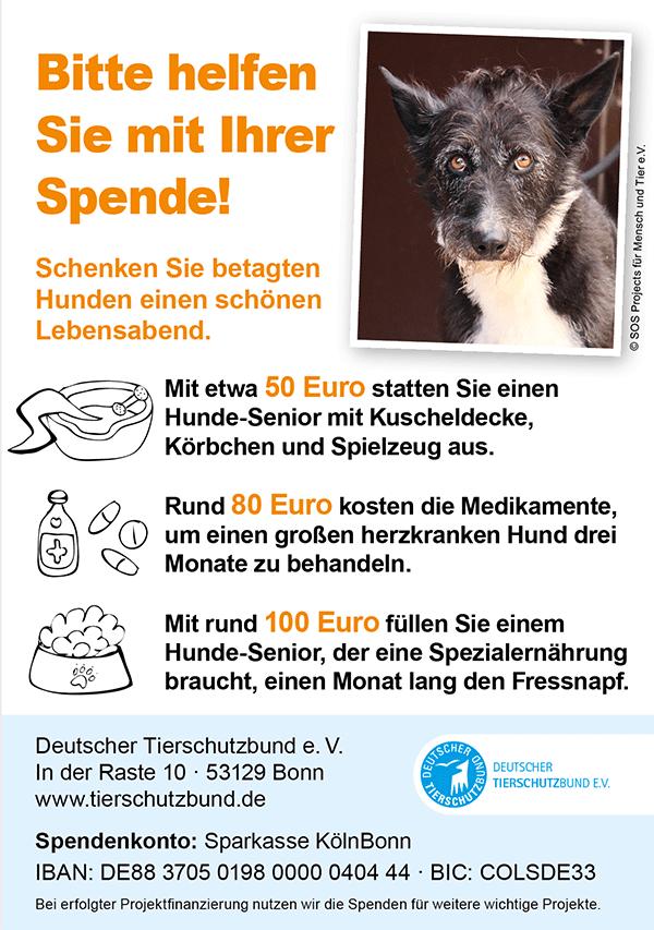 Deutscher Tierschutzbund Sonnenhof Flyer
